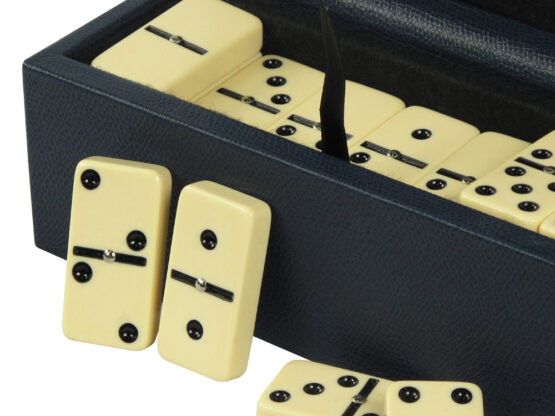 Luxury Domino Set